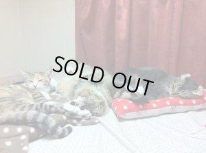 画像3: 【アウトレット】2代目でか猫マット:北欧風猫シルエット ※ 形に難あり